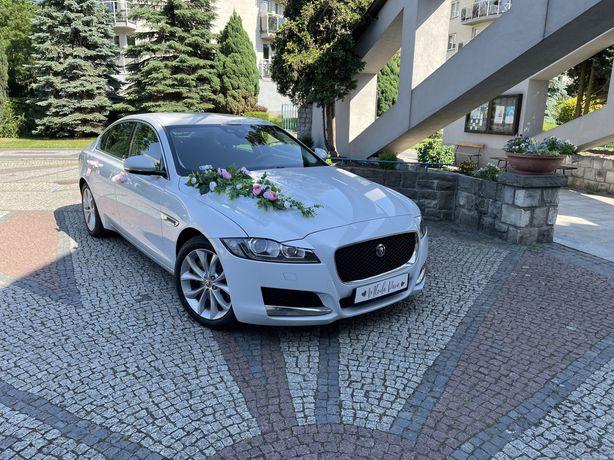 Jaguar XF - samochód, auto do ślubu - wesele, wolne terminy!