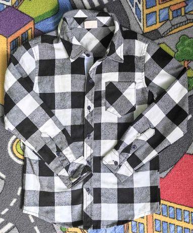 Chłopięca koszula bawełniana r na 6lat