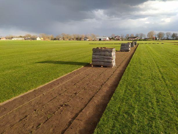 Trawa z rolki/wykładanie ogrodów