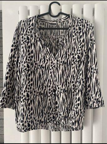 Bluzka koszula zebra