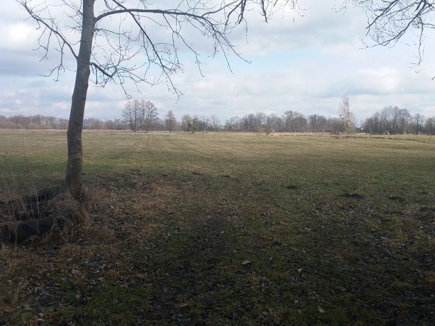 łąka wewn wsi ew. pod zabudowę 6600m2 dostęp do drogi