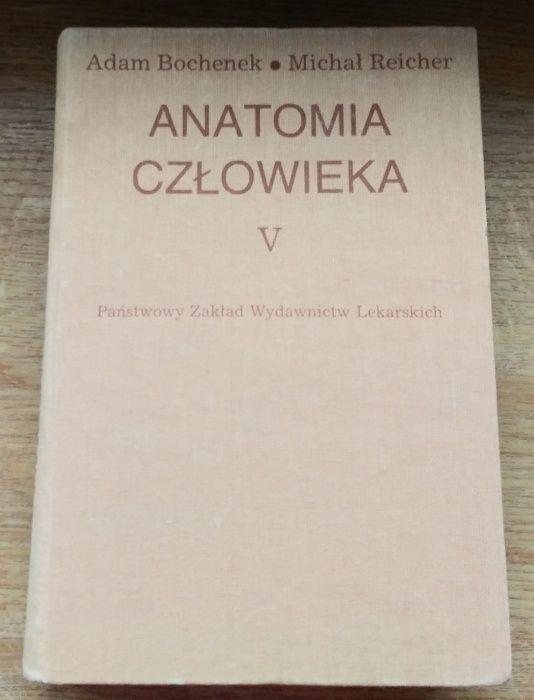 Anatomia człowieka Bochenek Tom V stan bdb bez zakreśleń Ostrów Wielkopolski - image 1
