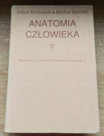 Anatomia człowieka Bochenek Tom V stan bdb bez zakreśleń