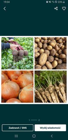 Ziemniaki IRYS, RICARDE, RUDOLF (dowóz) Też Sadzeniaki