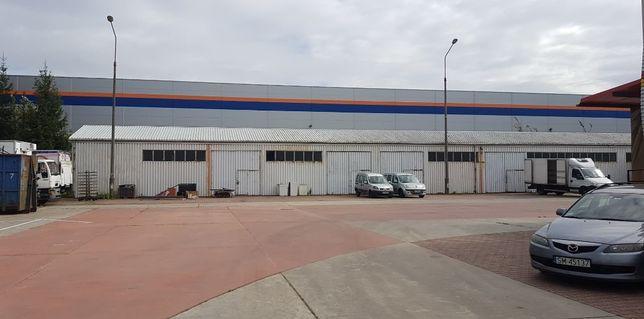 Plac manewrowy, parking tir 20 sztuk , hale magazynowe