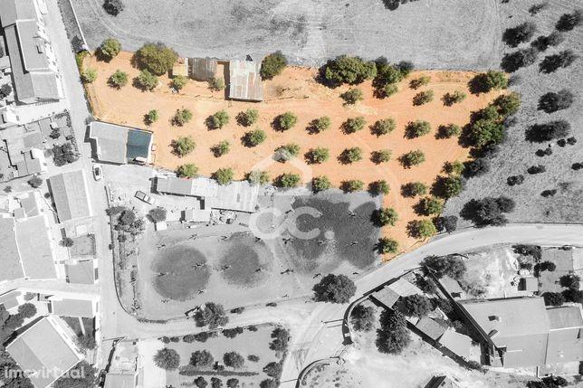 Quintinha de 2685 m2 com moradia térrea T1 | Santa Susana (Redondo)