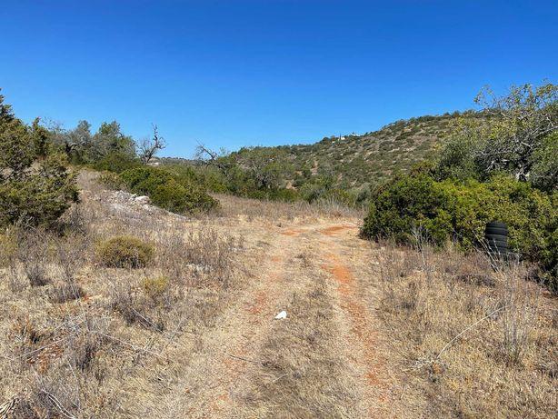 Terreno rustico 7720m2 Boliqueime, acesso pela estrada,