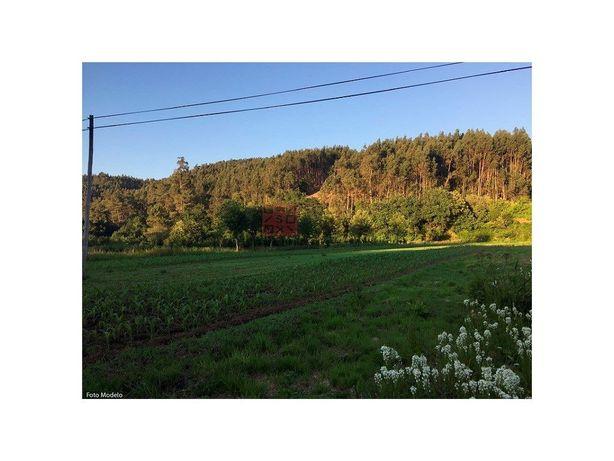 Terreno em Pigeiros
