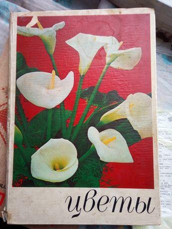 Книга все о цветах