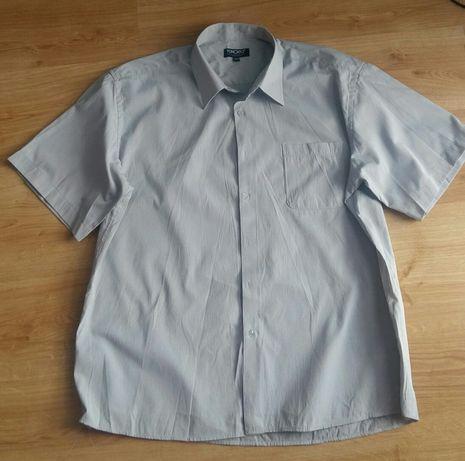 Koszula męska krótki rękaw Toronto rozmiar 45/46