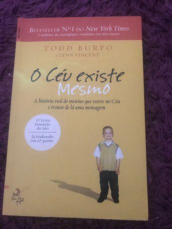 Livros (2 mão) em português