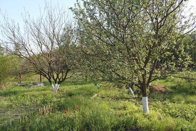 Продам земельну ділянку поблизу лісу та річки, Сухоліси