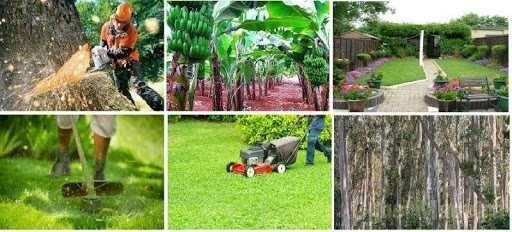 Limpeza de Terrenos / Jardinagem