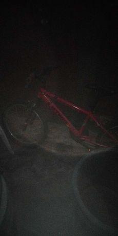 "Bicicleta roda 21"""