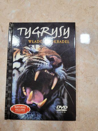 Film przyrodniczy Tygrysy