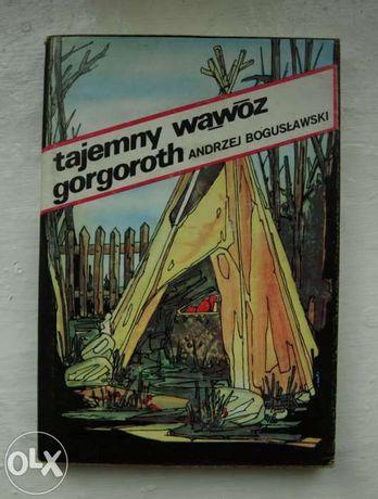 Tajemny wąwóz Gorgoroth - Andrzej Bogusławski