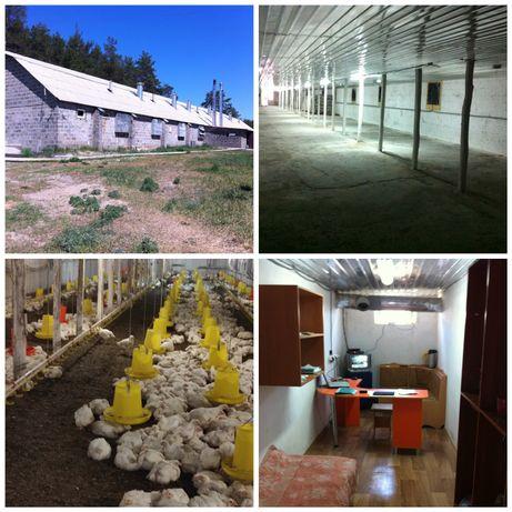 СРОЧНО Продам обменяю ферму хозяйств по выращиванию домашнего бройлера
