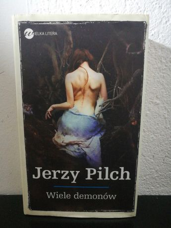 Wiele demonów - Jerzy Pilch (zaznaczone fragmenty)