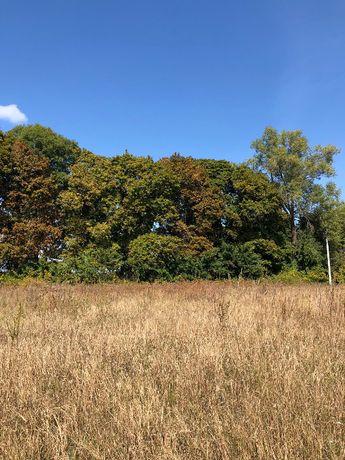 Продается земельный участок под строительство в Глебовке