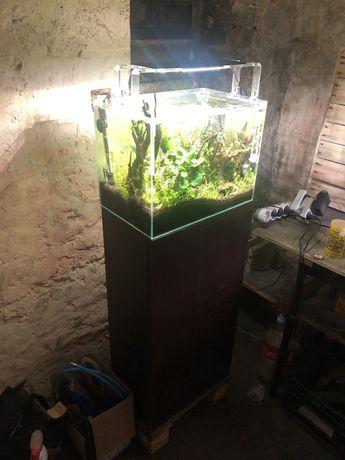Akwarium zestaw 30l oswietlenie SkyLight!