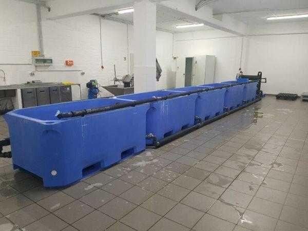Kompletne wyposażenie do odchowalni ryb
