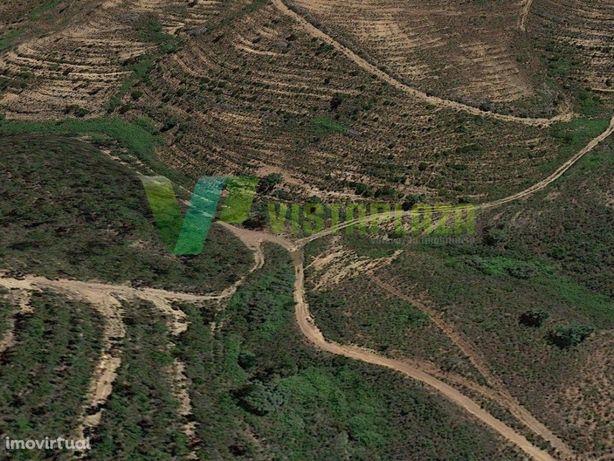 Terreno Rustico 27 Hectares, Mexilhoeira Grande.