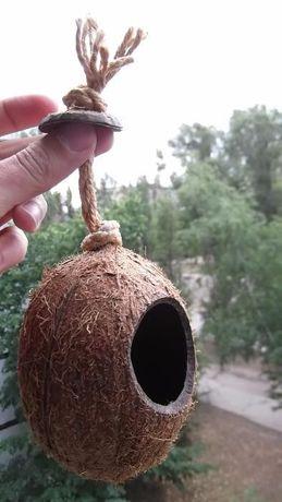 Домик кокос для попугая волнистый неразлучник дуплянка гнездо амадин