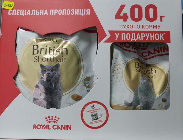 Корм в подарочной упаковке для британских котиков