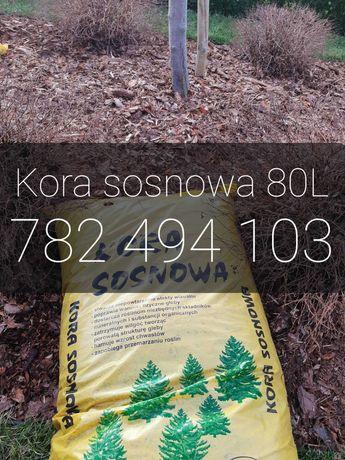 Kora Sosnowa 80L | Sortowana | Gniezno i okolice | Transport GRATIS