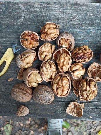 Продам грецкий орех 500кг урожай 2020