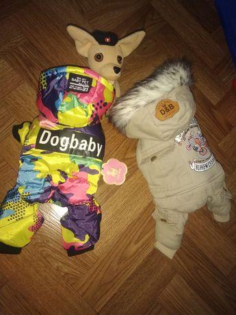 Новая Одежда для собак маленьких!Костюмы курточка дождевик.