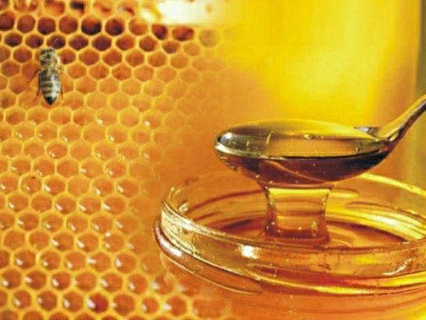 Продам мёд липа