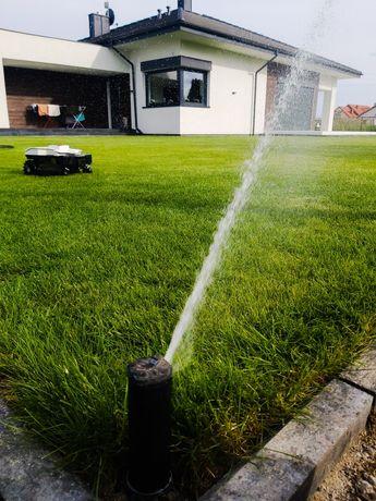 Nawadnianie, trawa z rolki, usługi ogrodnicze, zakładanie trawnika