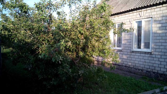 Будинок  , смт.Кринички