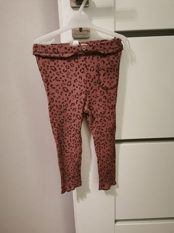 Leginsy Zara 98 panterka