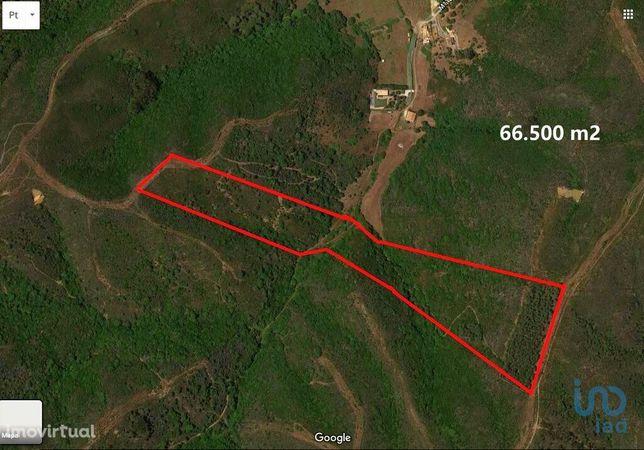 Terreno - 66500 m²