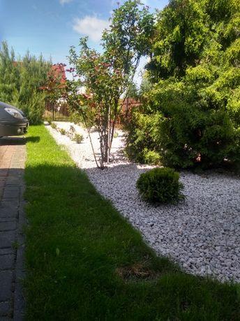 Kamień dekoracyjny ogrodowy 7,5 zł worek 25 kg
