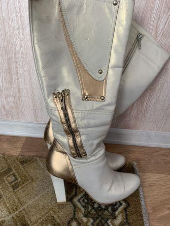 Женская обувь сапоги зима кожа