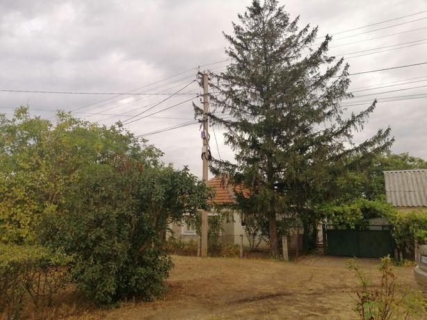 Продаётся дом, Мишково Погорелово Харчатовка