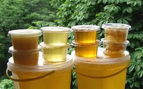 Мед натуральный из экологически чистой местности