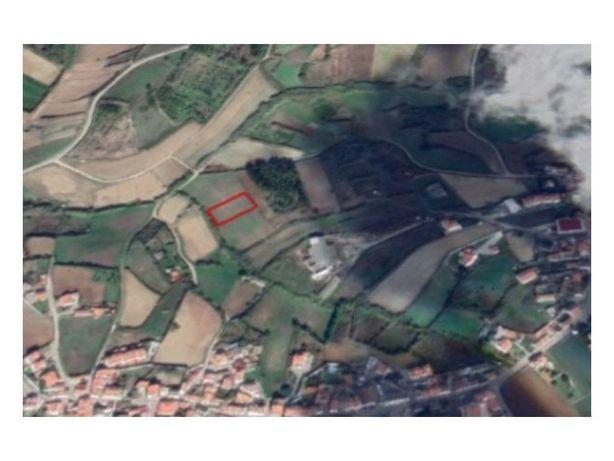 Terreno Agrícola, com 1560 mts, perto da Lourinhã