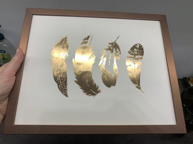 Obraz w ramie piorka piora