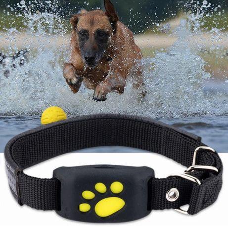 Ошейник с GPS-трекером  и локатором для домашних животных