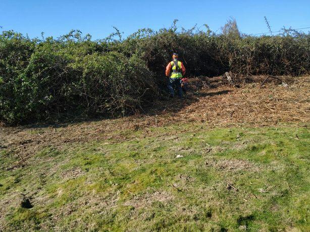 Limpezas agrícolas, lavouras e prestação de serviços