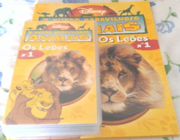 """Livro da Coleção """" O Mundo Maravilhoso dos Animais"""" da Disney"""
