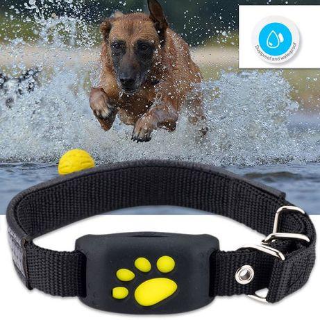 localizador gps para cão ou gato rastreador gps para animais e não só