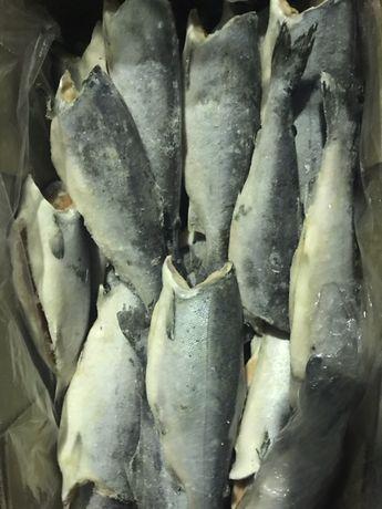 Рыба:скумбрия,селёдка,хек,минтай,триска,красная икра,хоки,форель,лосос