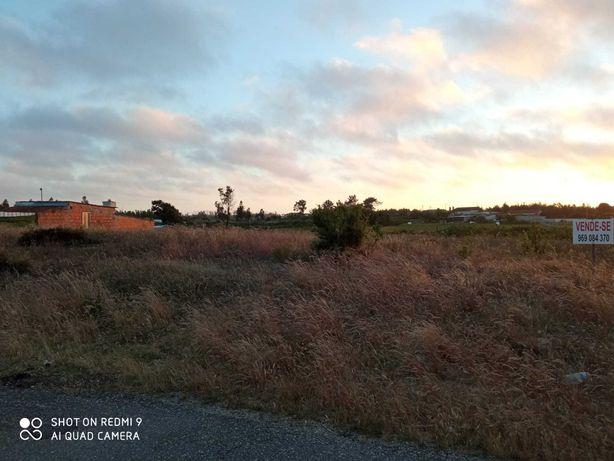 Terreno para Construção Tocha – Cochadas 45m de Frente