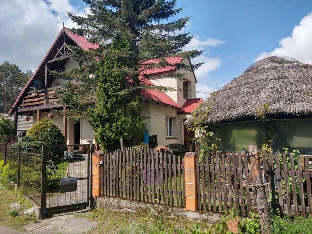 Tanie noclegi - pokoje gościnne Bory Tucholskie Tleń