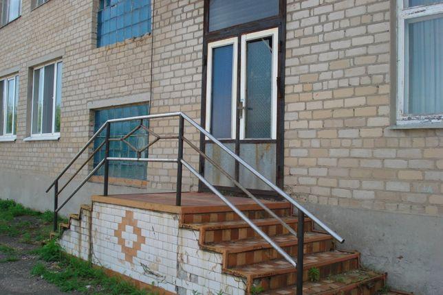 продам имущество,площадью 270 кв.м. в смт.Андреевке-80 000грн+торг